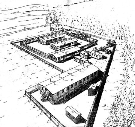 Cikansky Tabor V Letech Holocaust